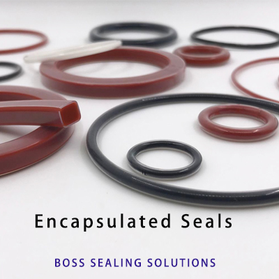 BOSS Encapsulated seals catalog